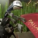 Golf Art hotel Pallas